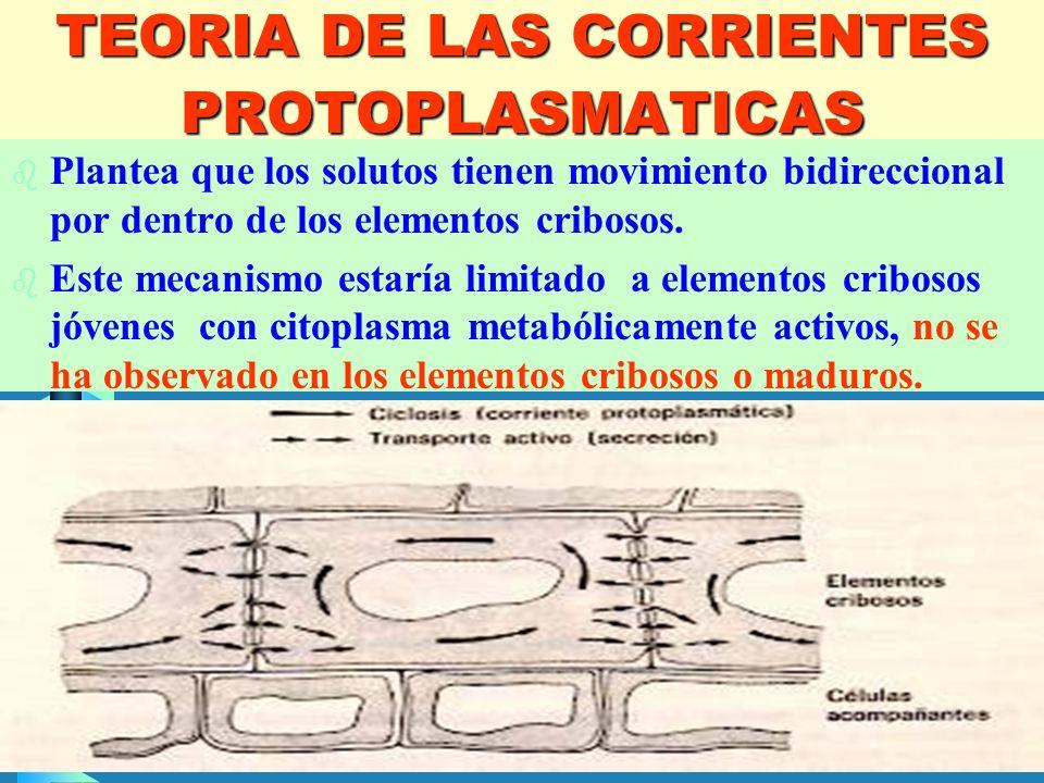 TEORIA DE LAS CORRIENTES PROTOPLASMATICAS