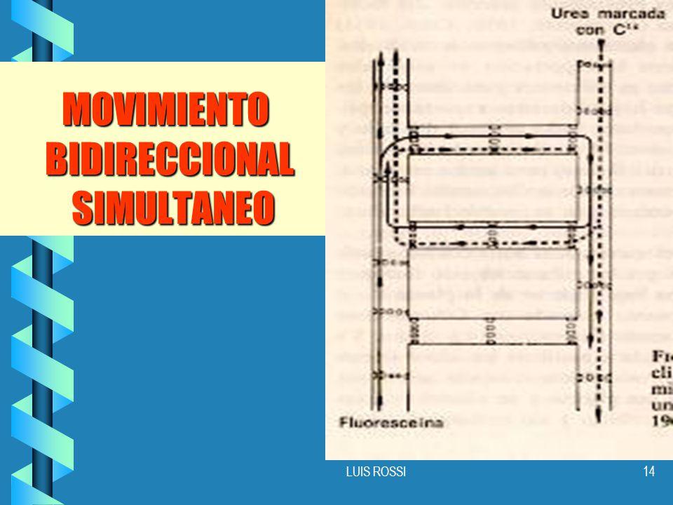MOVIMIENTO BIDIRECCIONAL SIMULTANEO
