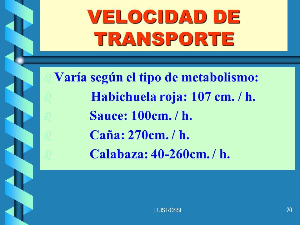 VELOCIDAD DE TRANSPORTE