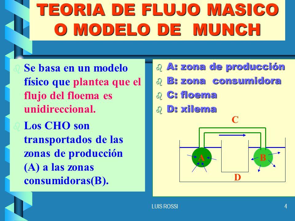 TEORIA DE FLUJO MASICO O MODELO DE MUNCH