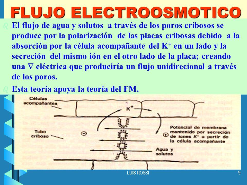 FLUJO ELECTROOSMOTICO