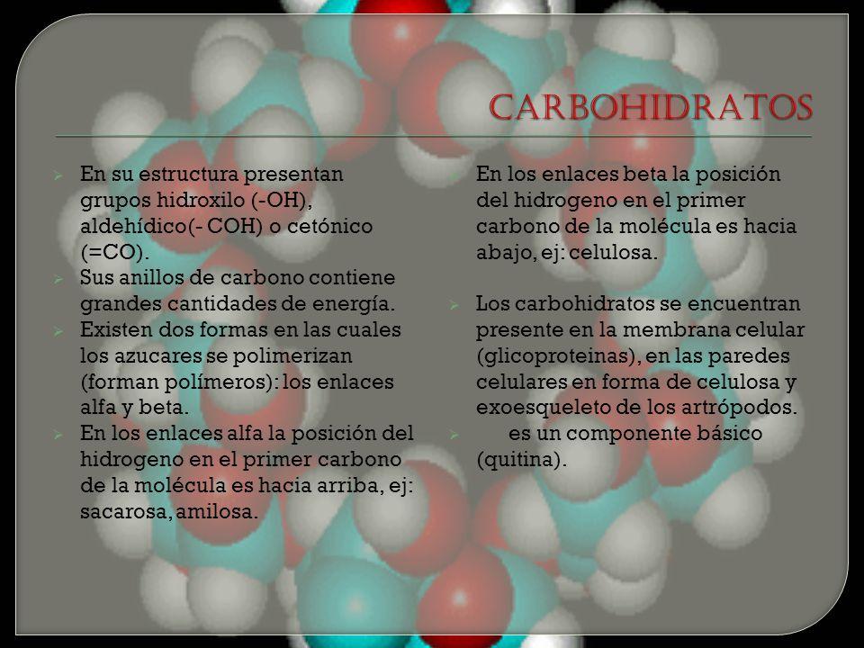 CARBOHIDRATOS En su estructura presentan grupos hidroxilo (-OH), aldehídico(- COH) o cetónico (=CO).
