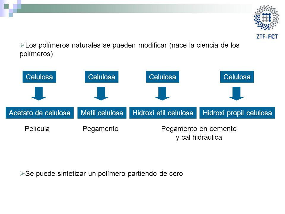 Hidroxi propil celulosa