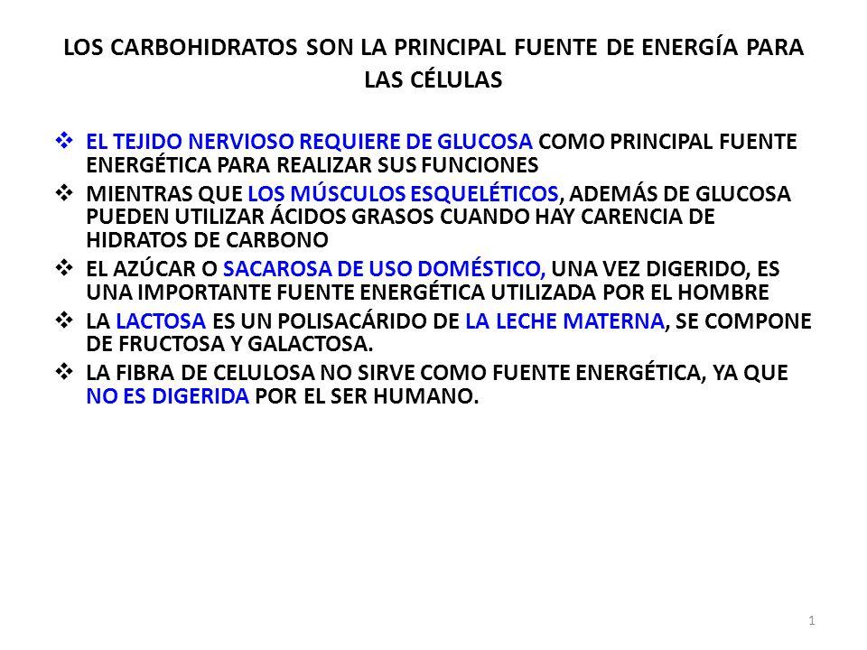LOS CARBOHIDRATOS SON LA PRINCIPAL FUENTE DE ENERGÍA PARA LAS CÉLULAS