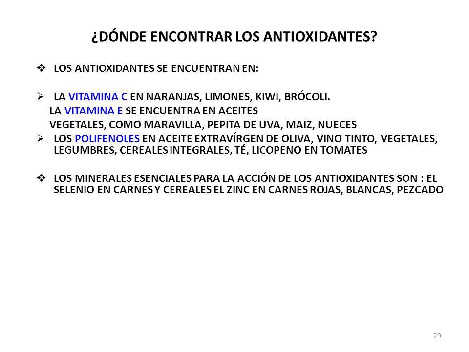 ¿DÓNDE ENCONTRAR LOS ANTIOXIDANTES