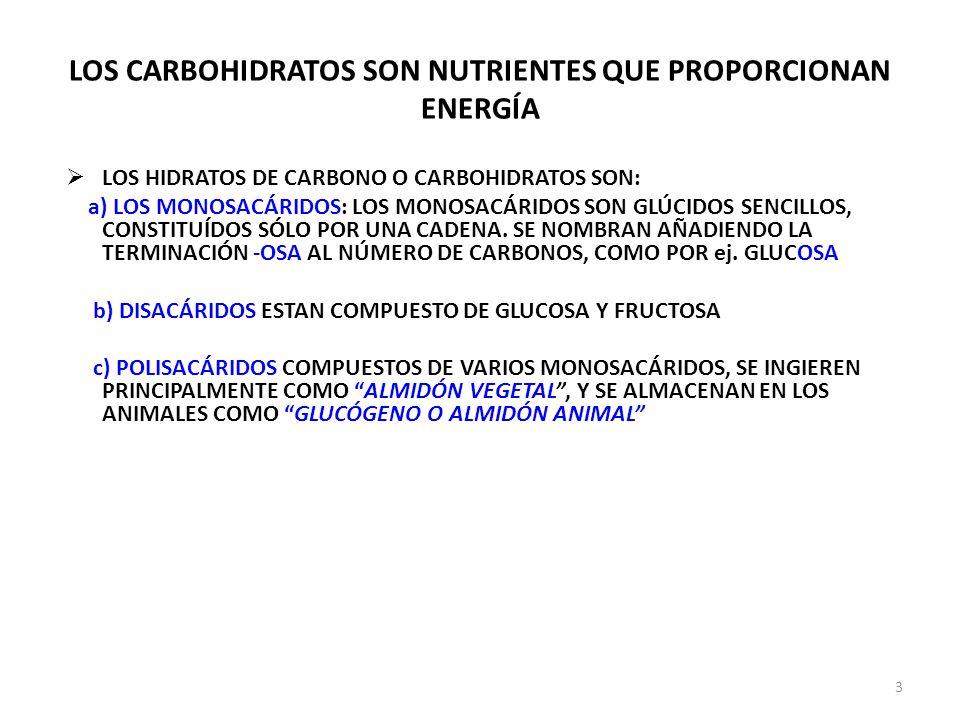 LOS CARBOHIDRATOS SON NUTRIENTES QUE PROPORCIONAN ENERGÍA