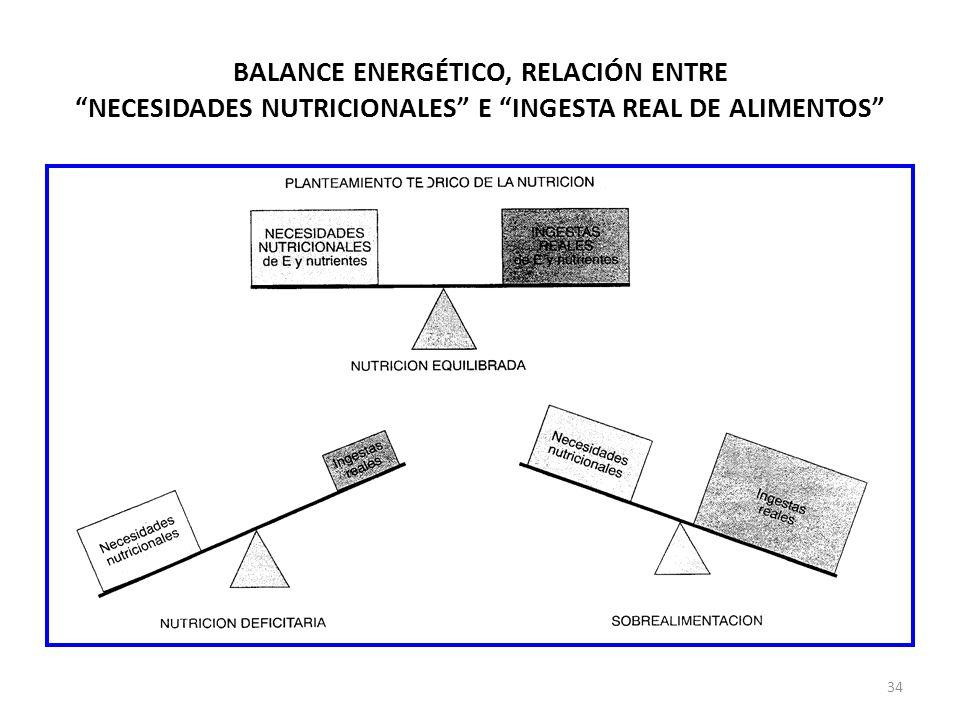 BALANCE ENERGÉTICO, RELACIÓN ENTRE NECESIDADES NUTRICIONALES E INGESTA REAL DE ALIMENTOS