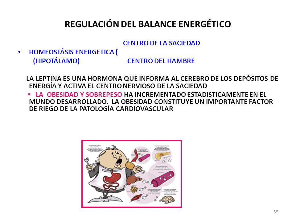REGULACIÓN DEL BALANCE ENERGÉTICO