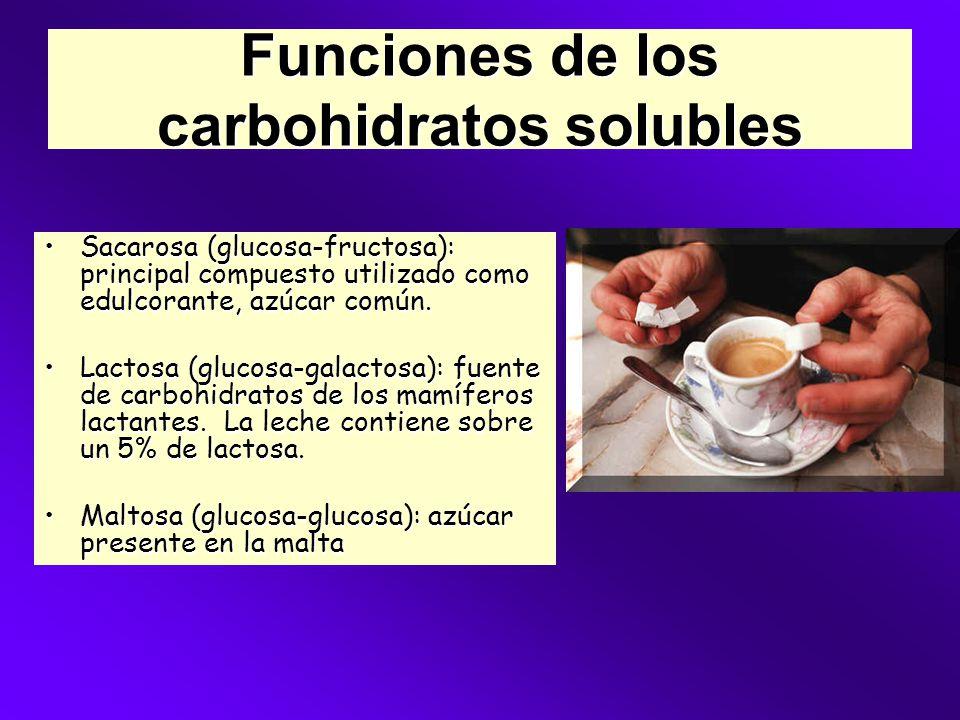 Funciones de los carbohidratos solubles