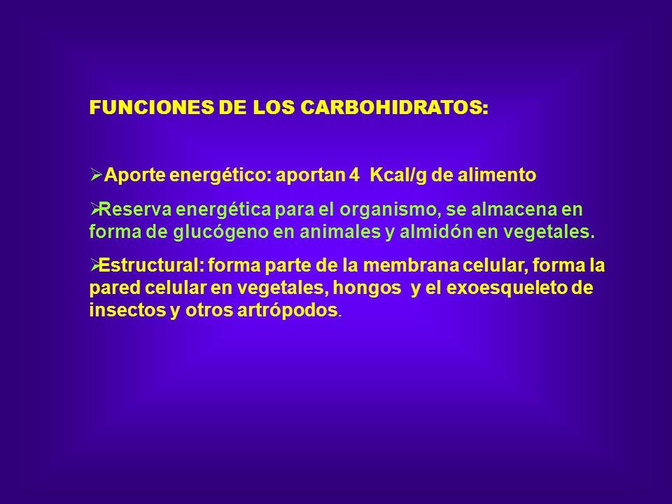 FUNCIONES DE LOS CARBOHIDRATOS: