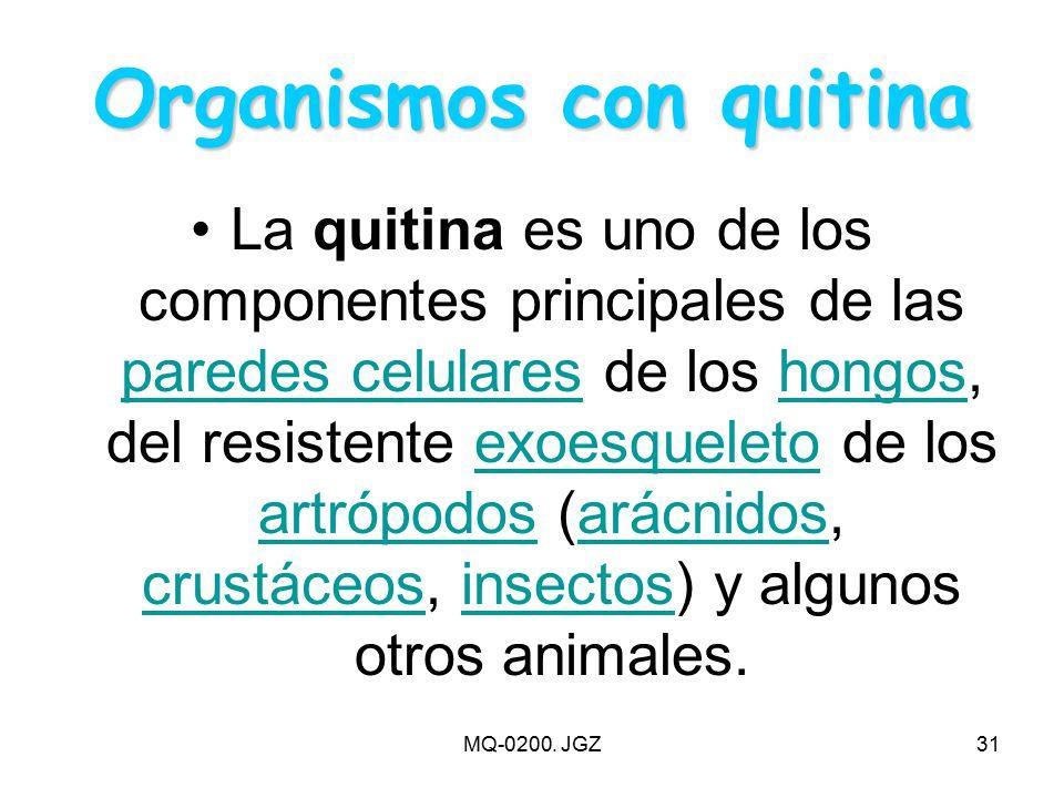 Organismos con quitina