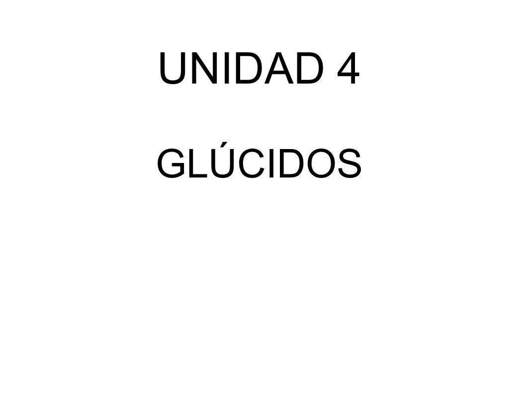 UNIDAD 4 GLÚCIDOS