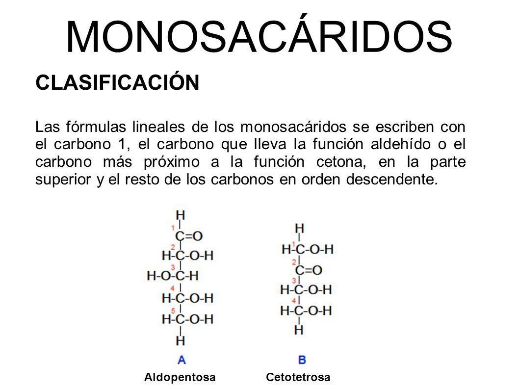 MONOSACÁRIDOS CLASIFICACIÓN