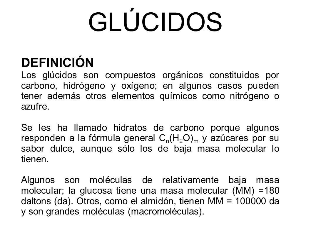 GLÚCIDOS DEFINICIÓN.