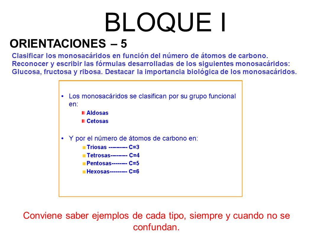 BLOQUE I ORIENTACIONES – 5
