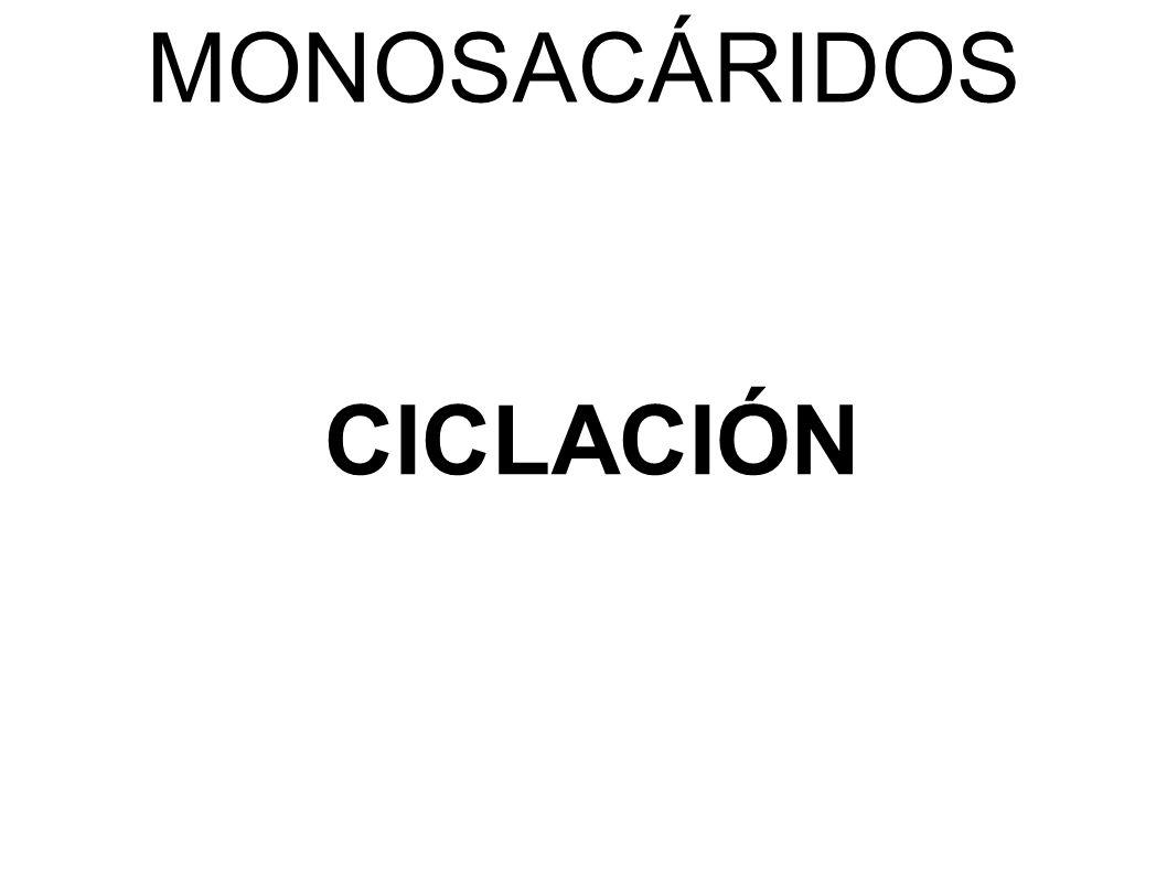 MONOSACÁRIDOS CICLACIÓN