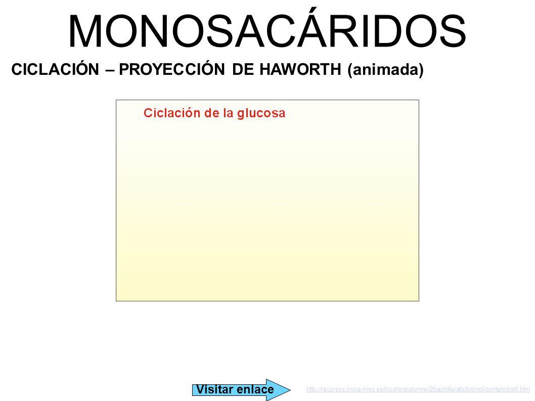 MONOSACÁRIDOS CICLACIÓN – PROYECCIÓN DE HAWORTH (animada)