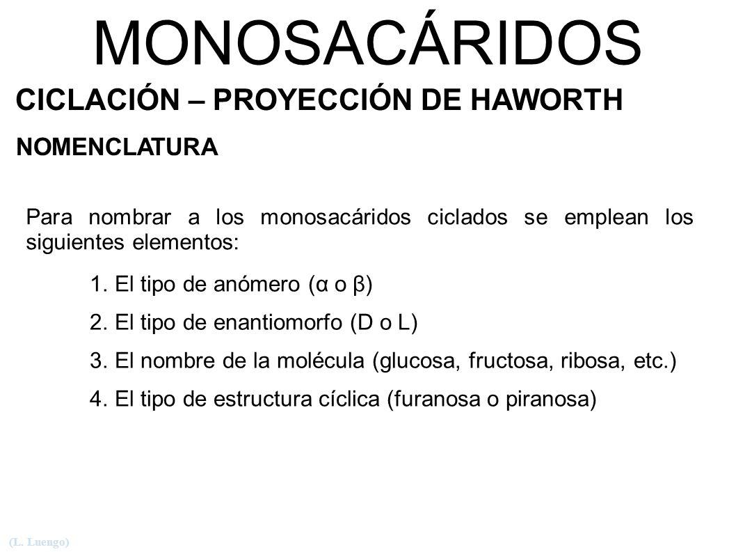 MONOSACÁRIDOS CICLACIÓN – PROYECCIÓN DE HAWORTH NOMENCLATURA