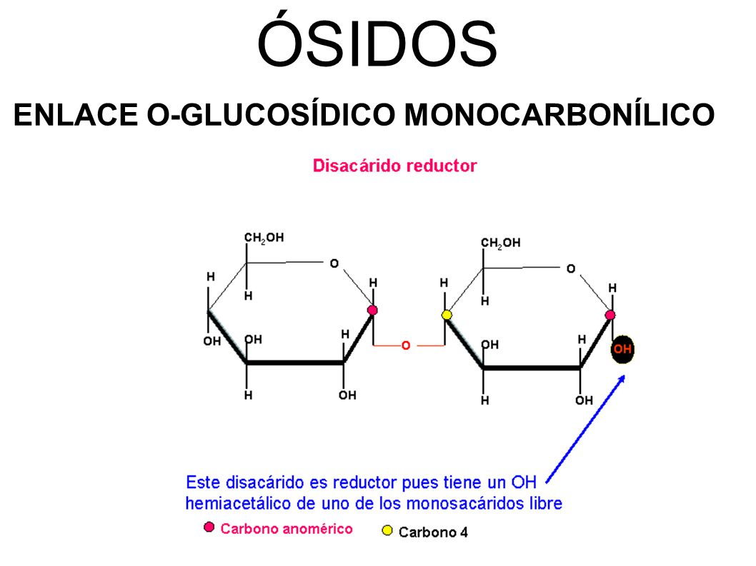 ÓSIDOS ENLACE O-GLUCOSÍDICO MONOCARBONÍLICO