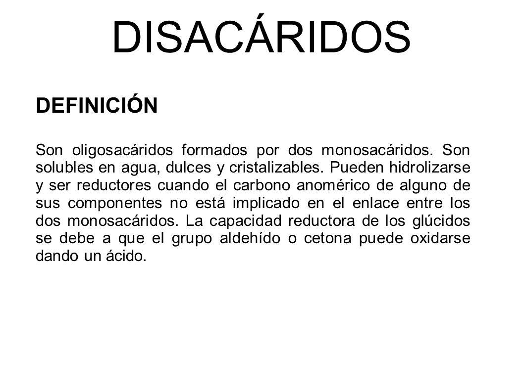 DISACÁRIDOS DEFINICIÓN