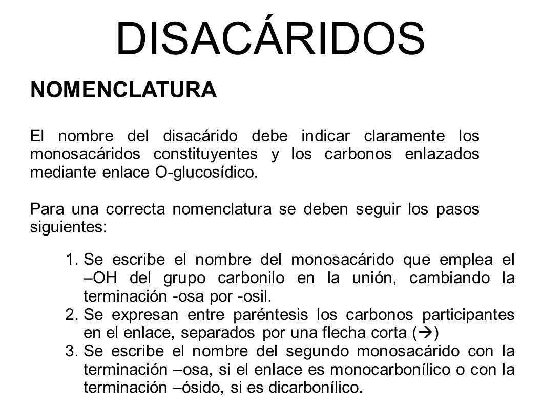 DISACÁRIDOS NOMENCLATURA
