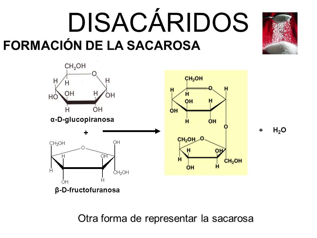 Otra forma de representar la sacarosa