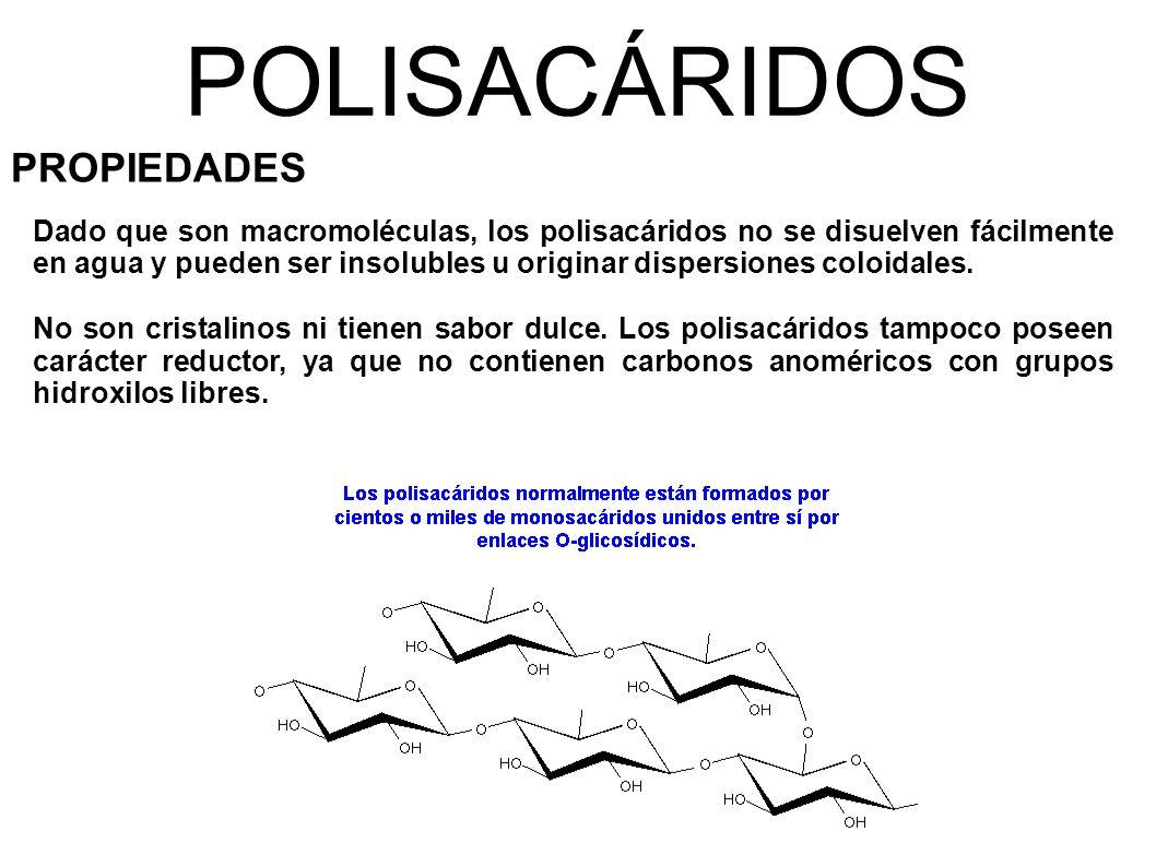 POLISACÁRIDOS PROPIEDADES