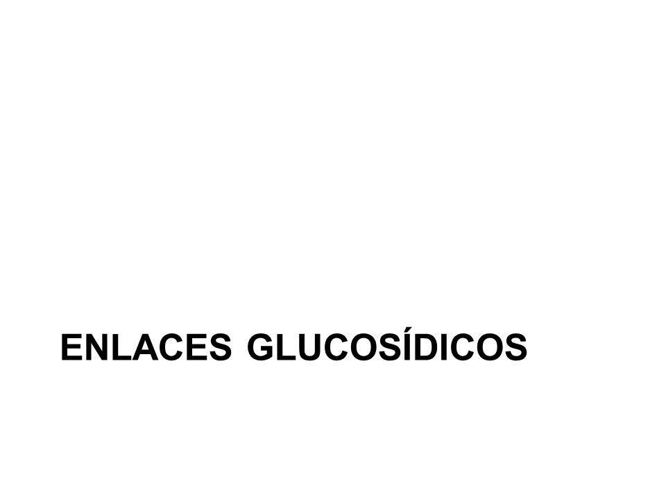 ENLACES GLUCOSíDICOS