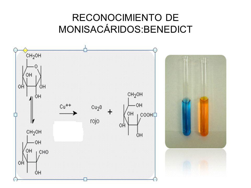 RECONOCIMIENTO DE MONISACÁRIDOS:BENEDICT