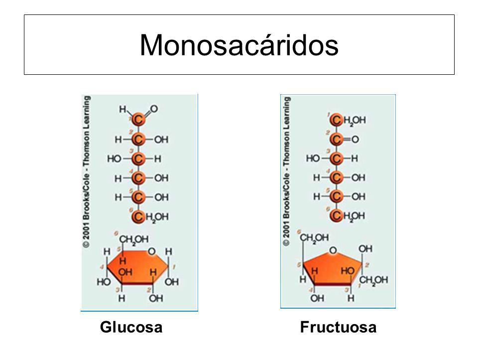 Monosacáridos Glucosa Fructuosa