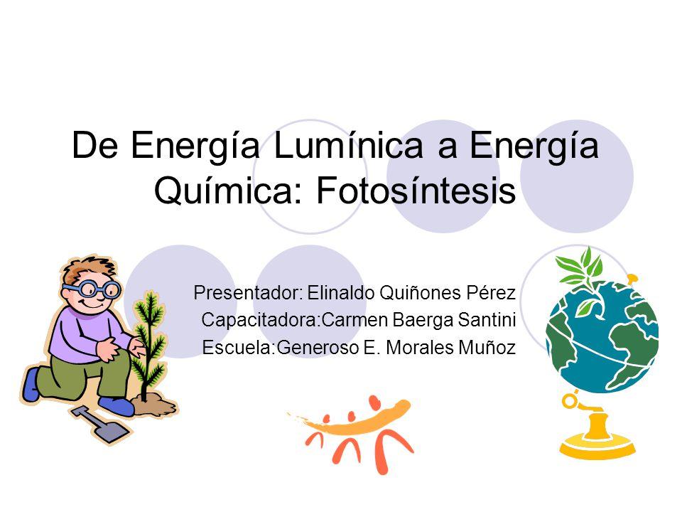 De Energía Lumínica a Energía Química: Fotosíntesis