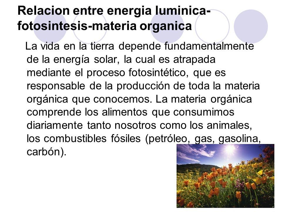 Relacion entre energia luminica-fotosintesis-materia organica