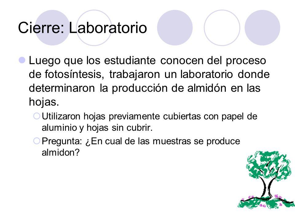 Cierre: Laboratorio
