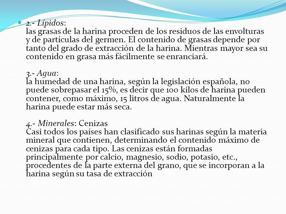 2.- Lípidos: las grasas de la harina proceden de los residuos de las envolturas y de partículas del germen.