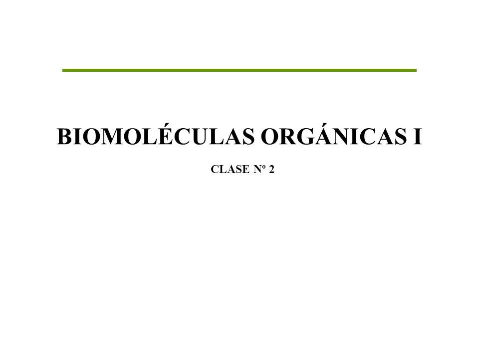 BIOMOLÉCULAS ORGÁNICAS I CLASE Nº 2