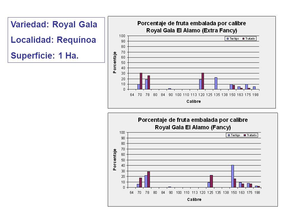 Variedad: Royal Gala Localidad: Requínoa Superficie: 1 Ha.