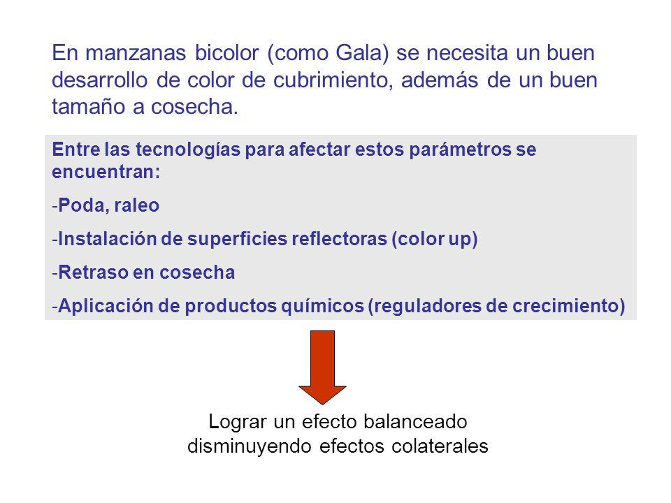 Lograr un efecto balanceado disminuyendo efectos colaterales
