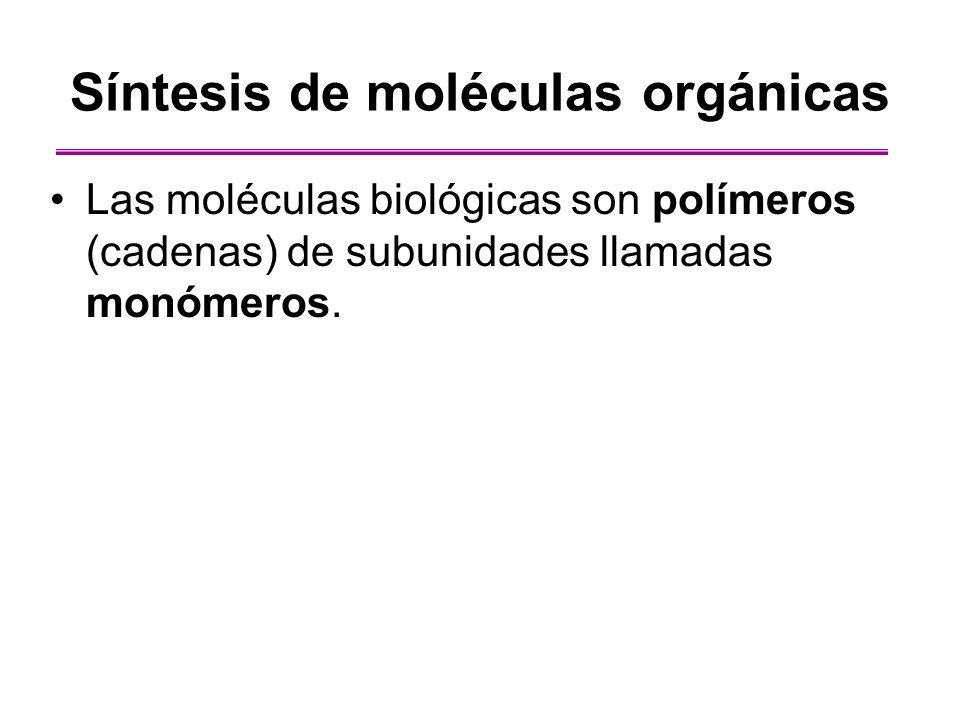 Síntesis de moléculas orgánicas