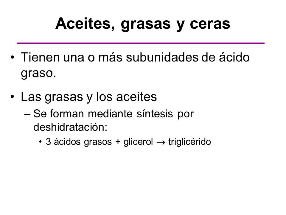 Aceites, grasas y ceras Tienen una o más subunidades de ácido graso.