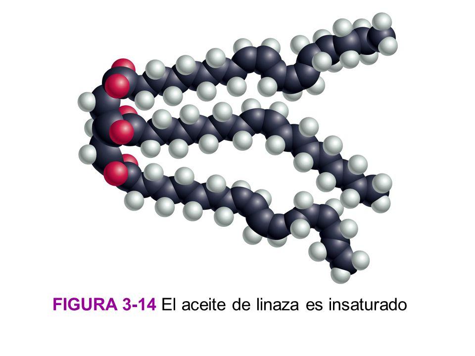 FIGURA 3-14 El aceite de linaza es insaturado