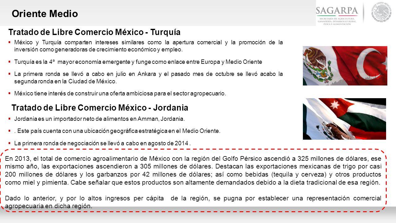 Oriente Medio Tratado de Libre Comercio México - Turquía