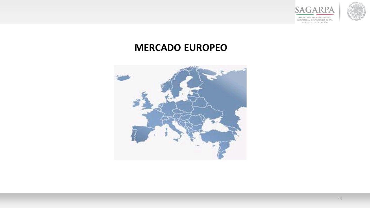 MERCADO EUROPEO