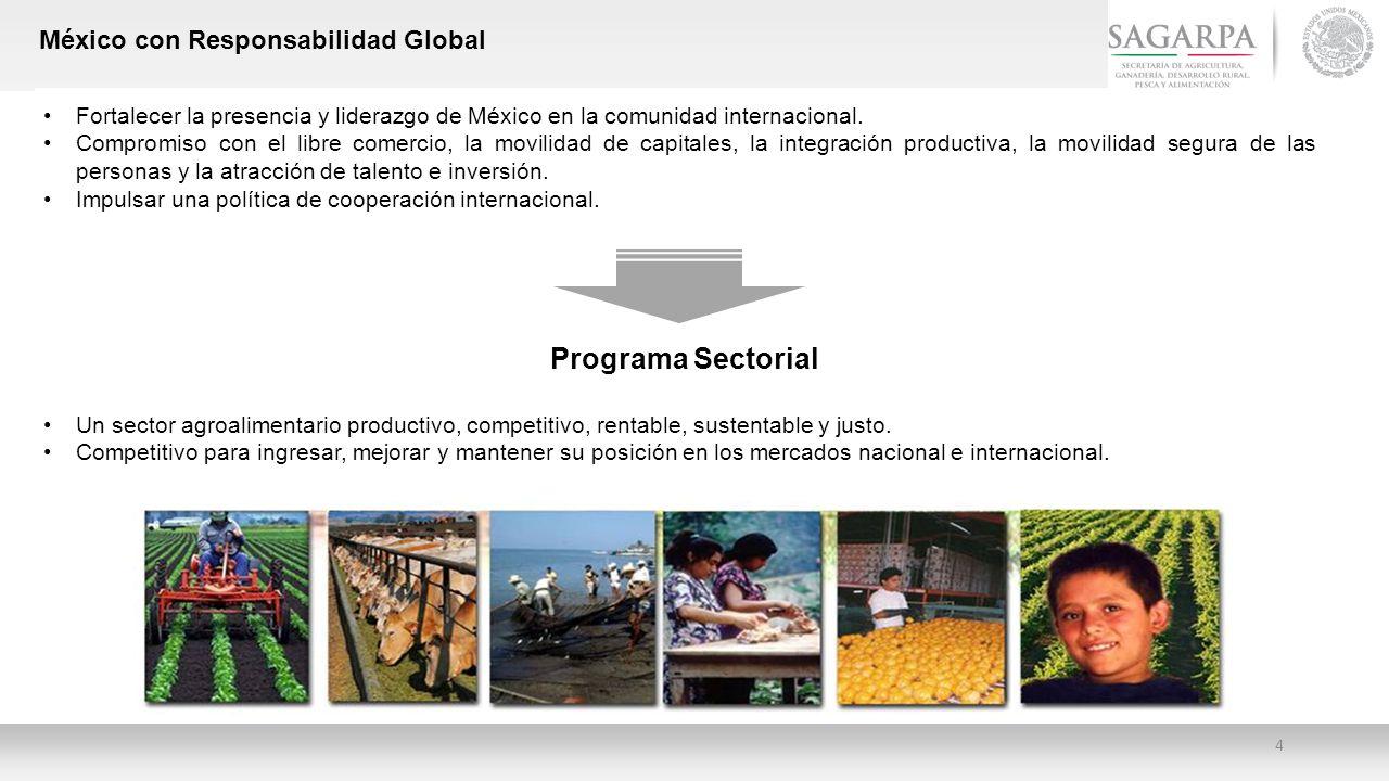 Programa Sectorial México con Responsabilidad Global