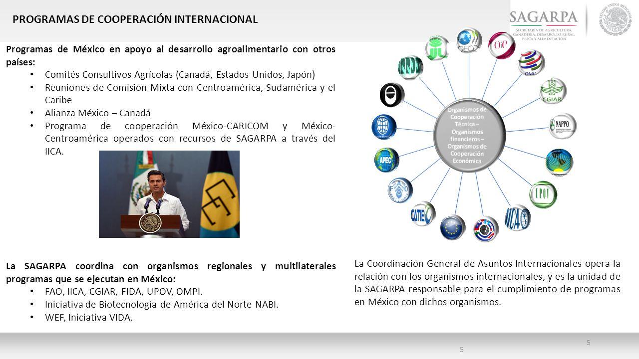 PROGRAMAS DE COOPERACIÓN INTERNACIONAL