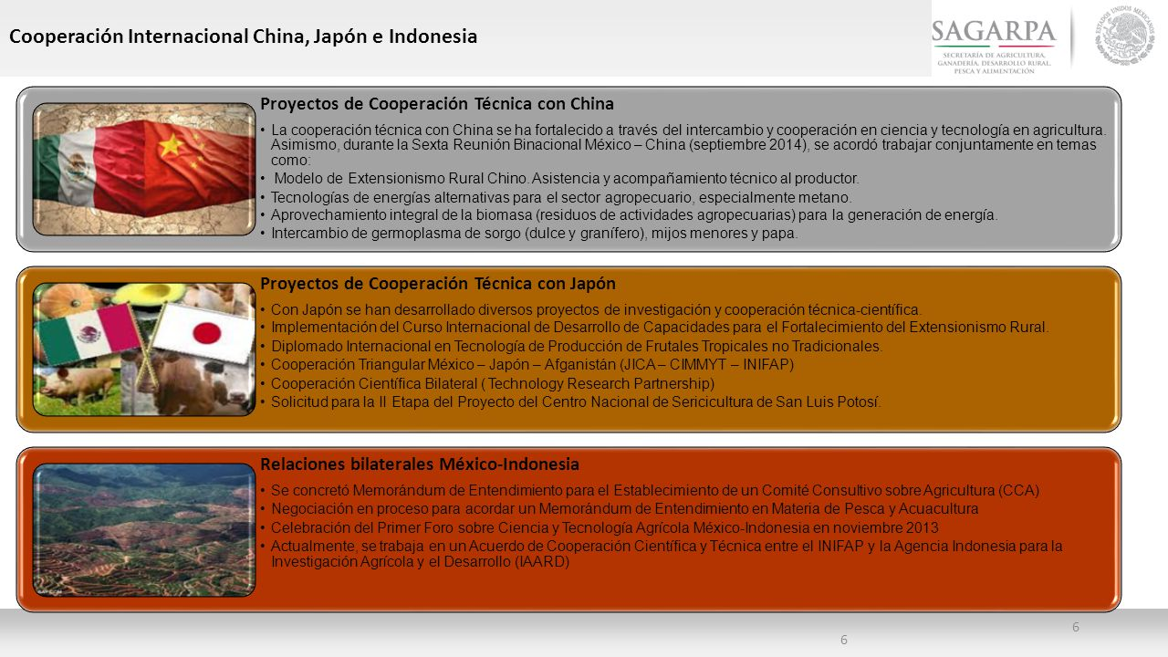 Cooperación Internacional China, Japón e Indonesia