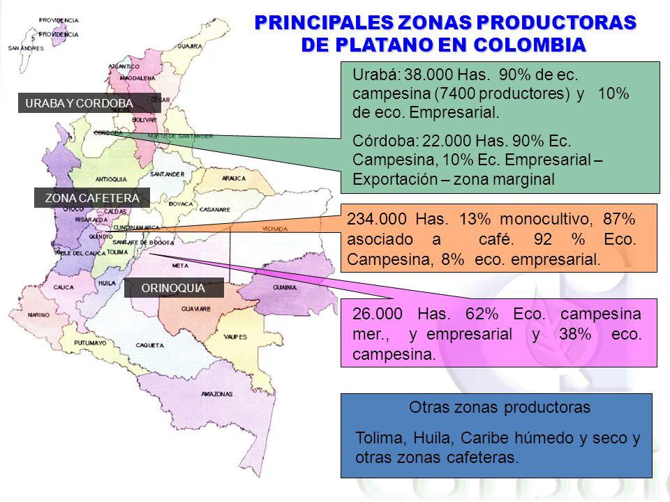PRINCIPALES ZONAS PRODUCTORAS DE PLATANO EN COLOMBIA