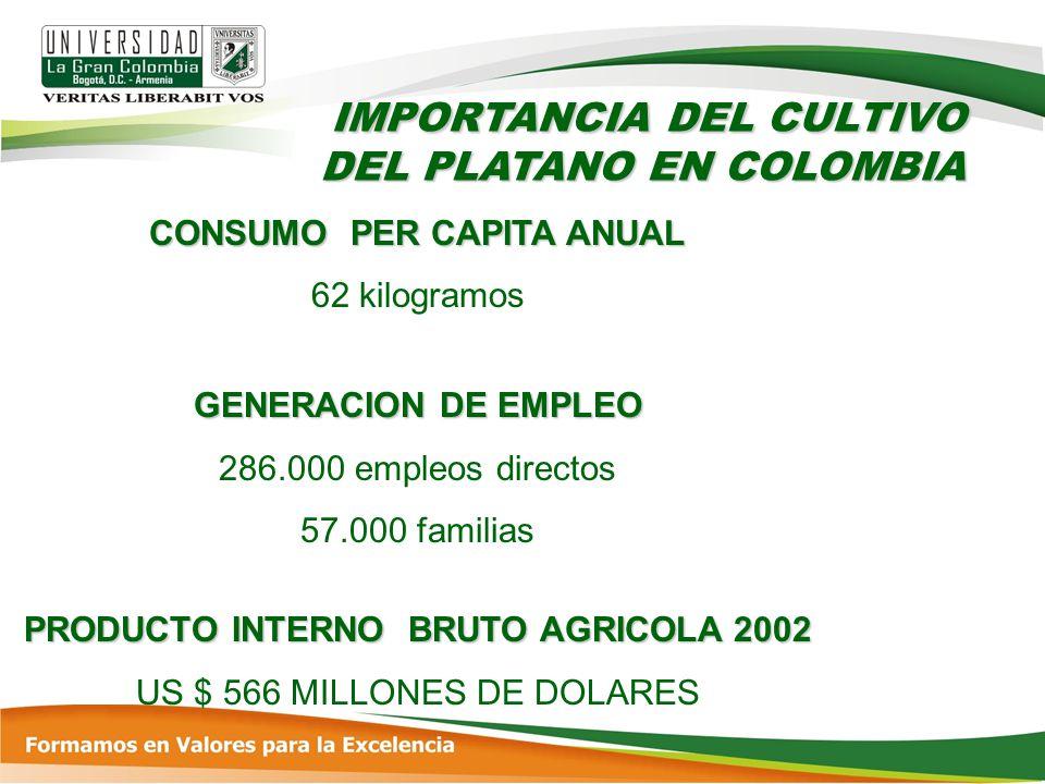 CONSUMO PER CAPITA ANUAL PRODUCTO INTERNO BRUTO AGRICOLA 2002