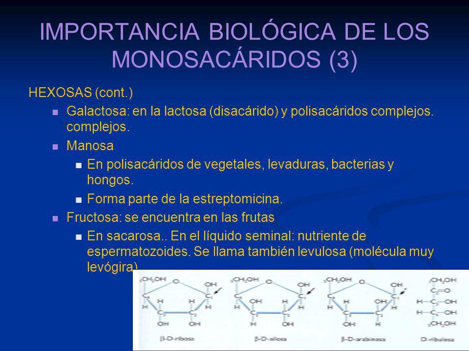 IMPORTANCIA BIOLÓGICA DE LOS MONOSACÁRIDOS (3)
