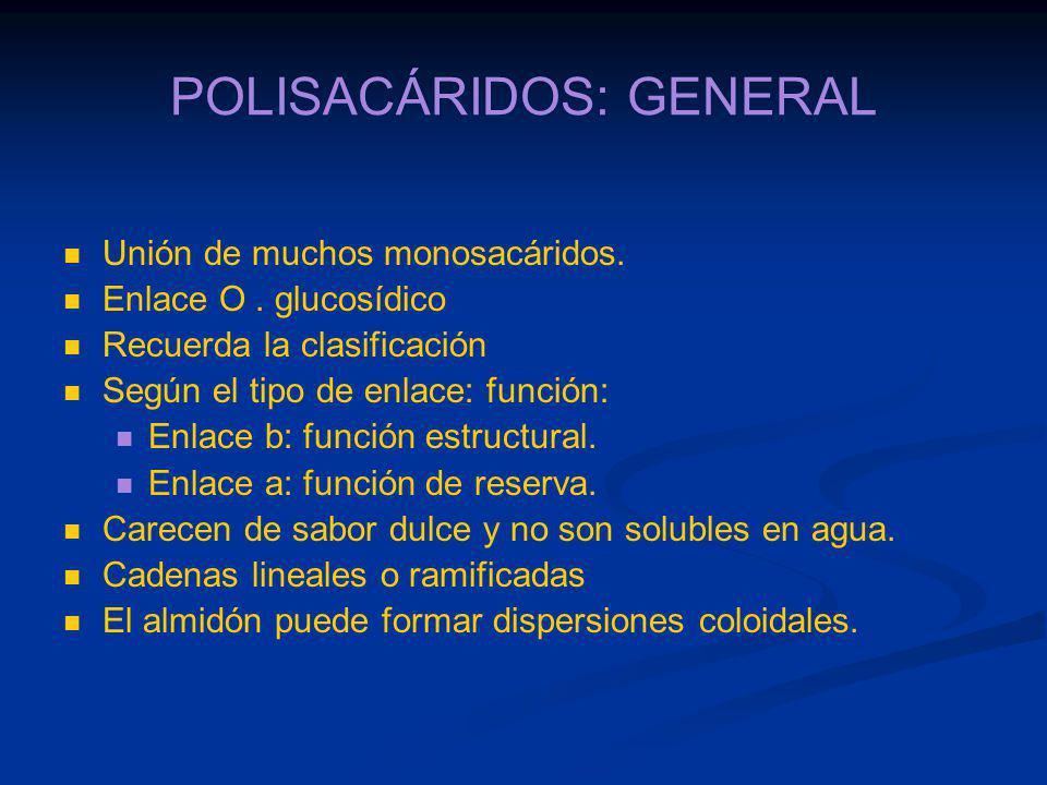 POLISACÁRIDOS: GENERAL