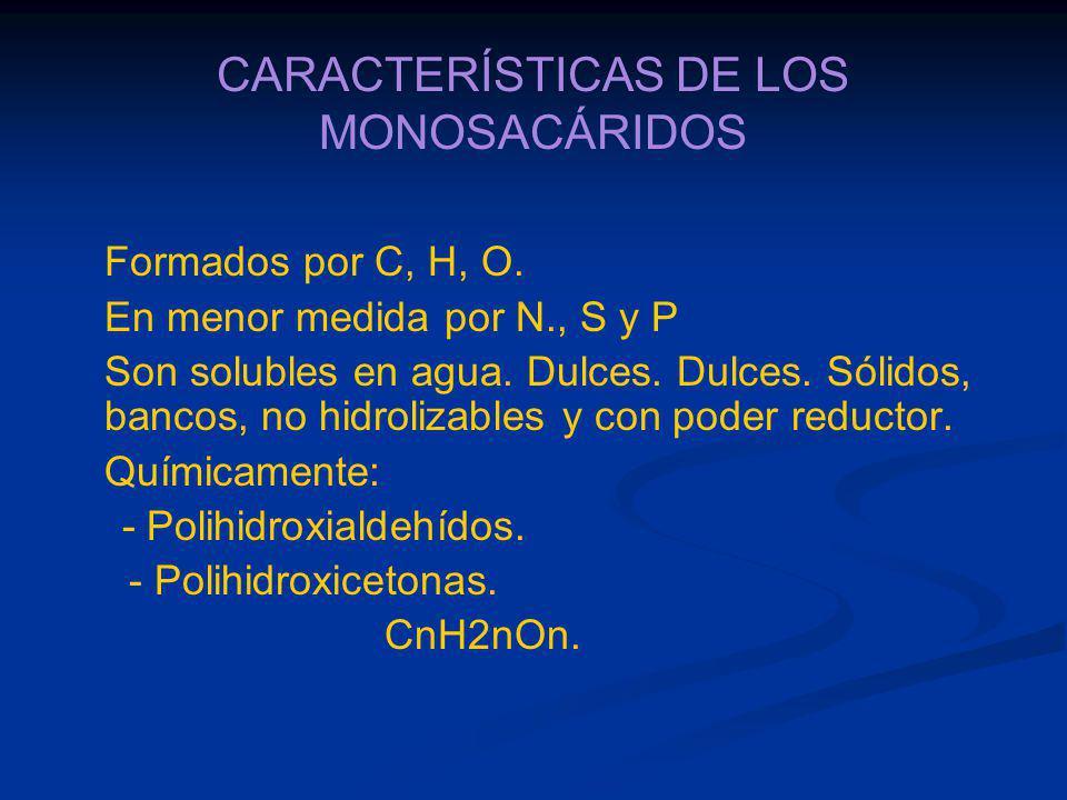 CARACTERÍSTICAS DE LOS MONOSACÁRIDOS